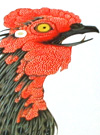 Ito Jakuchu Tattoo Designs of Roosters and Flowers